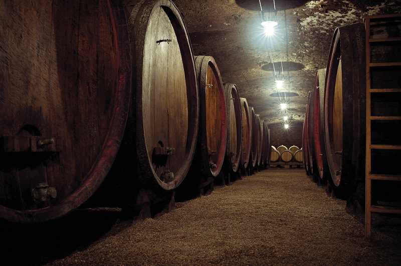vinifaction vin rouge beaujolais